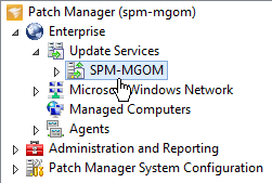 Update the Windows Update Local Policy on remote systems